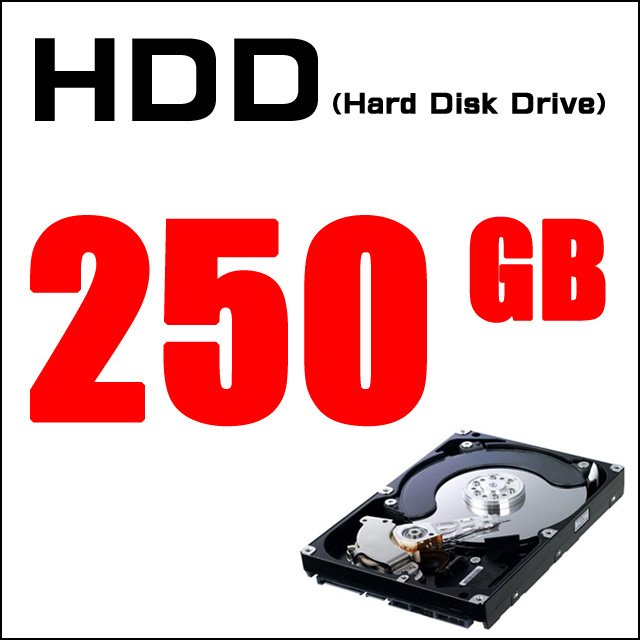 ストレージ★HDD250GB