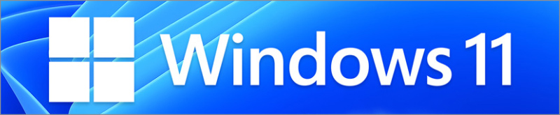OS★Windows11